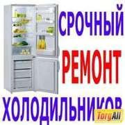 Ремонт холодильников и морозильных камер,  витрин в Алматы 87015004482
