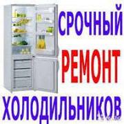 Не включается холодильник  Денис