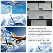 Amadeus - индивидуальное обучение.Международный диплом