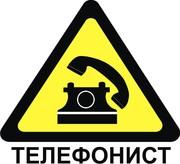 Услуги Телефониста Алматы