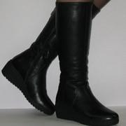Сапоги женские. Зимняя обувь. Зимние сапоги. Кожа