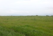 Земля в Карасайском районе
