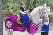 аренда лошади в Алматы