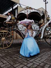 Карета для принцесс