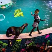 100 билетов на выступление красочного Aqua Show