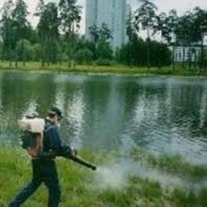 Обработка водоема от комаров в Алматы,  уничтожение личинок