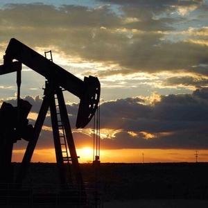 Организация реализует ГСМ: дизельное топливо,  бензин