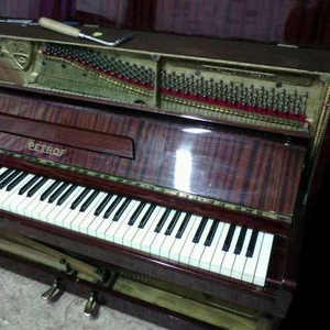 Настройка пианино, рояля, ремонт и предосмотр перед покупкой пианино