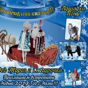 дед Мороз и Снегурочка на санях