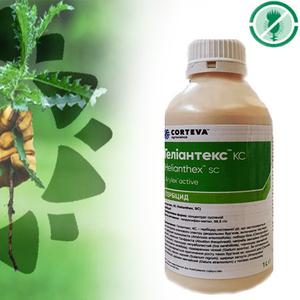 Гелиантекс-гербицид подсолнечник