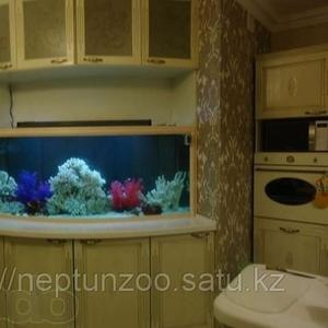изготовление морских и пресноводных аквариумов