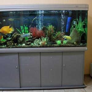 Продается шикарный аквариум с рыбками