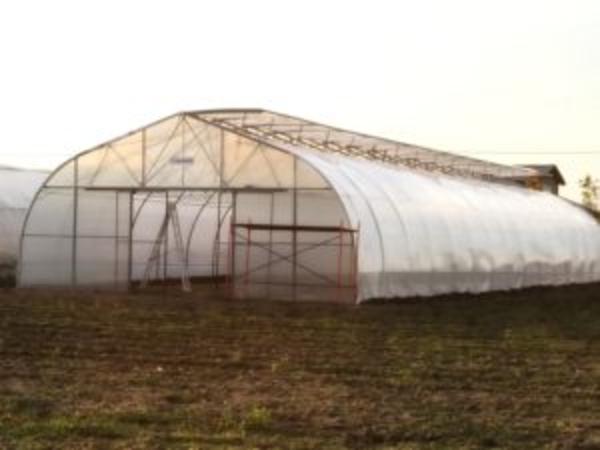 Промышленная/фермерская теплица Oriente RUS  5