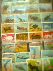 продам почтовые марки гашенные и негашенные