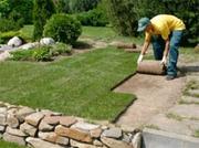 Ландшафтный дизайн,  озеленение участка,  рулонный газон.