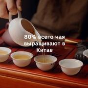 Натуральный китайский чай в Алматы!